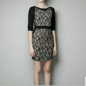 ZARA W&B Collection Black Lace Bodycon Dress Large